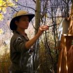 Lockhart painting