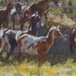 Lockhart - Hay for Breakfast 16x20 (2)